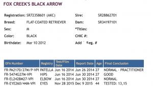 Arrow OFA info