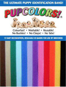 pupcolors